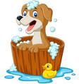 cartoon dog having a bath vector image vector image