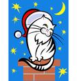 cat in a Santa hat vector image