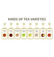different tea bags with fruit or herbal flavor vector image