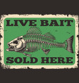 fishing shop advertising vintage template vector image