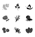 Herb and spices set icons in black style Big vector image