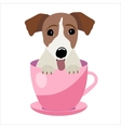 Jack Russell Terrier in pink teacup vector image vector image