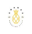 pineapple line art logo vector image