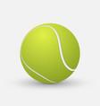 realistic tennis ball vector image vector image