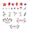 set of floral design elements collection with vector image