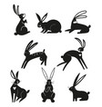 silhouettes black rabbits isolated on a white vector image vector image