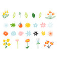 spring and summer flowers in flat style isolated vector image