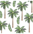 tree palms background vector image vector image