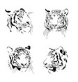 black and white ink draw tiger head vector image