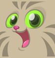 cartoon image a gray cat face vector image vector image