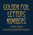 golden foil letters numbers dollar and euro vector image vector image