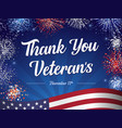 thank you veterans lettering fireworks vector image vector image