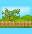 wooden fence with grass and tree landscape symbol vector image