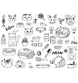 cat doodles on a white background vector image