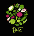 detox poster of lettuce salads and green vector image