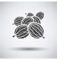 Gooseberry icon on gray background vector image vector image