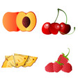apricot cherry pineapple raspberryset tasty vector image