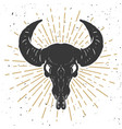 buffalo skull isolated on white background design vector image vector image
