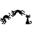 cat black thin one jump vector image