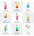 Classic Alcohol Cocktails Icons Set vector image vector image