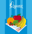 delicious and organic fruits vector image vector image