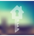 key icon on blurred background vector image vector image
