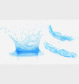 water crown and splashes vector image vector image
