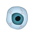 cartoon image of the eyeball for vector image