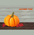 autumn pumpkin realistic banner layout vector image