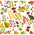 seamless fall forest pattern vector image