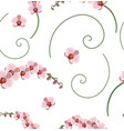 seamless pattern pink orchid vector image vector image