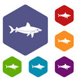 shark fish icons set hexagon vector image vector image