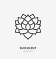 succulent flat line icon thin sign of vector image