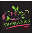 vegetables set of vegetables background ima vector image