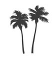 vintage beautiful palm trees vector image vector image