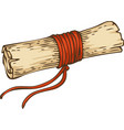 vintage scroll with red rope vector image