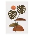 abstract monstera leaf plant poster elegant