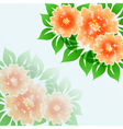 Beautiful flower blue background vector image