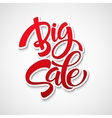 Big Sale Inscription Calligraphy Lettering vector image vector image