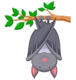 Cartoon bat sleeping vector image vector image