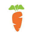 juicy carrot vector image