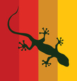 salamander on a color background vector image vector image