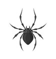 spider in a flat style vector image