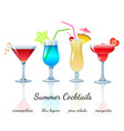 Summer cocktails set isolated vector image vector image