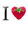 I love raspberry vector image vector image
