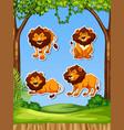 lion set sticker template vector image vector image