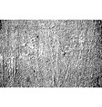 old grunge weathered black and white texture vector image