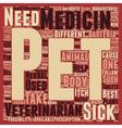 Pet Medicines Best Buddy Of Pets In Sickness text vector image vector image