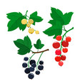 set of cartoon red black and white currant vector image