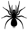 Silhouette spider